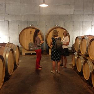 GIFT COUPON WINE TOUR AND EXCURSION WITH BERTRAND BOSC