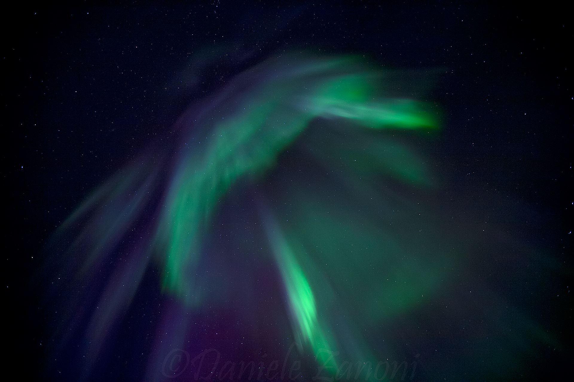 Nordlys observasjon fra en vakker skog (Andenes)