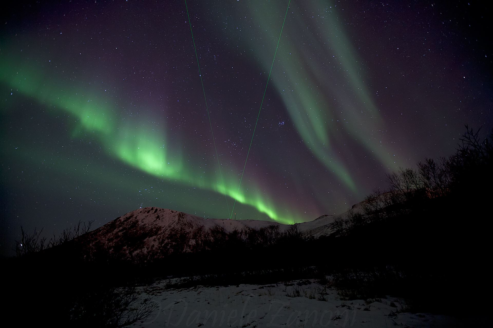 Northern Light Observation from the Wood (Andenes)