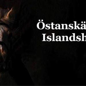 Östanskär Islandpferden