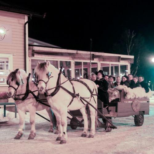 Kanefart med hest og vogn 45 min