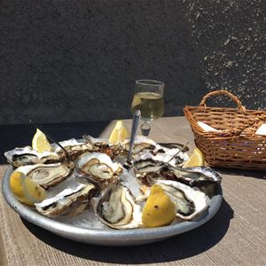 Oysters and Wine tasting : gourmet route
