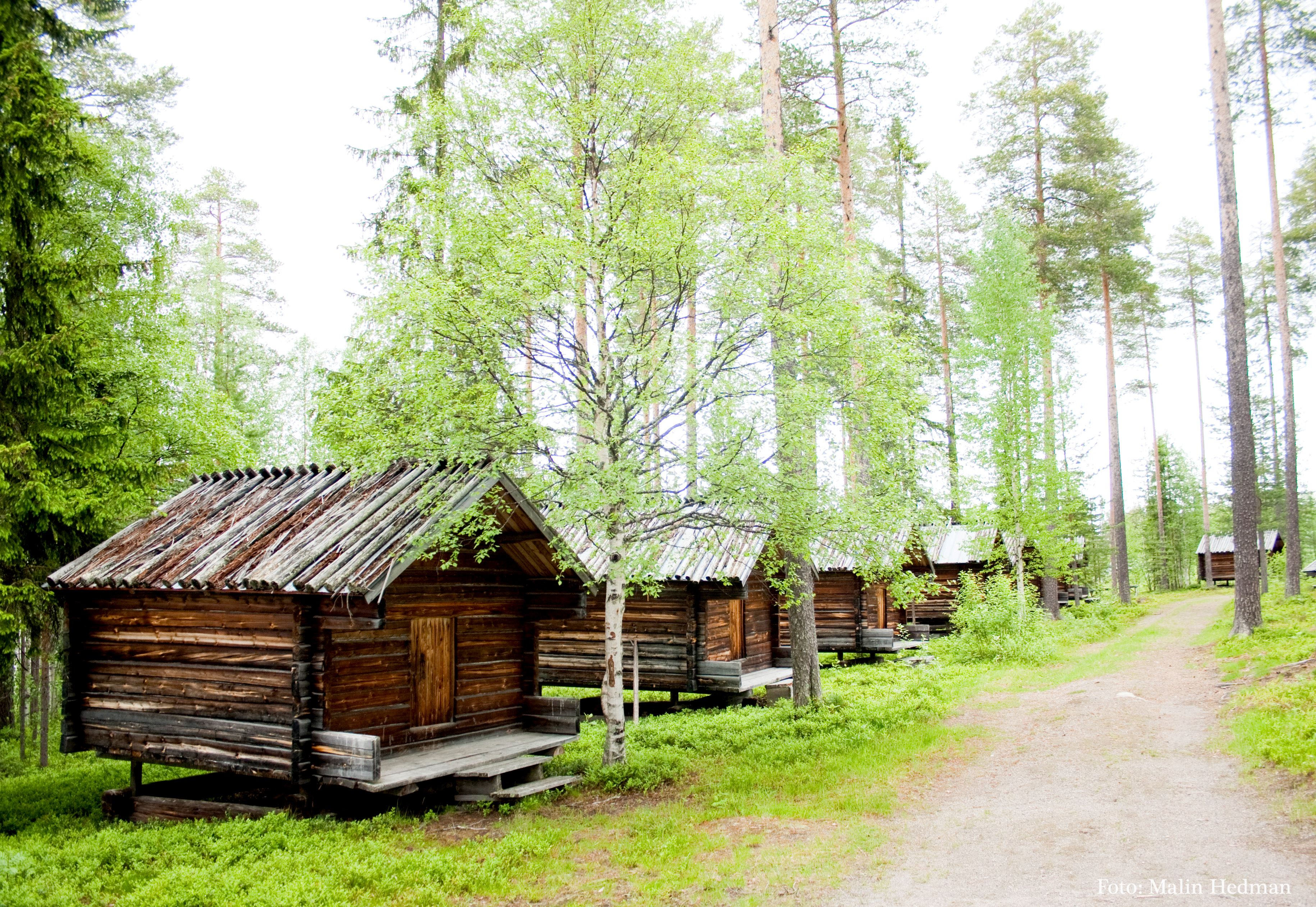 Malin Hedman,  © Malå kommun, Lappstan