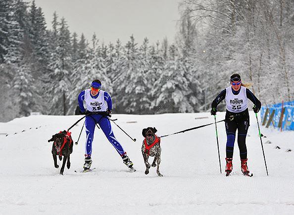 http://www.draghundsport.se/sv/111,  © http://www.draghundsport.se/sv/111, Draghunds-SM Nordisk Stil