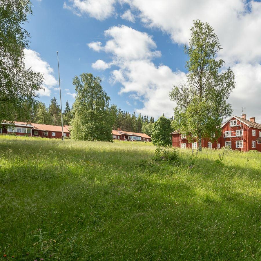 © Slava Druk (watorafy.com)., Sätergläntan B&B, Insjön.