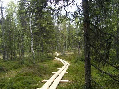 Fageråsens naturreservat