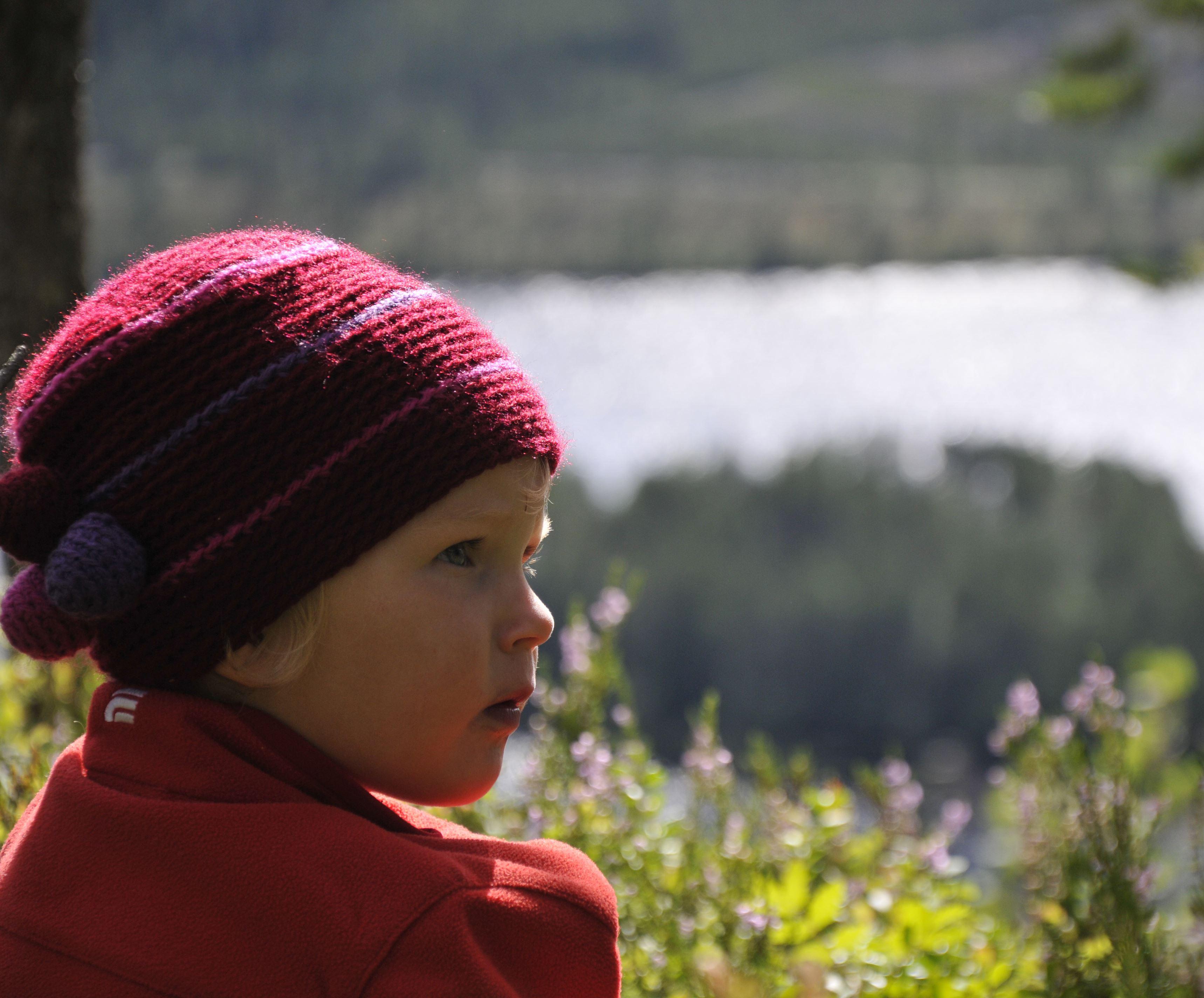 Besök Starrbergets naturreservat