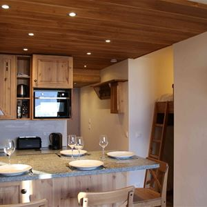 VANOISE 256 / APARTMENT 2 ROOMS CABIN 4 PERSONS - 4 GOLD SNOWFLAKES - ADA