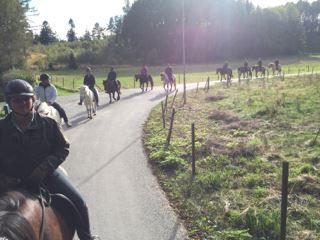 Hallamölla Gård,  © Hallamölla Gård, Hallamölla Gård – Pferdeaktivitäten und Reitferien