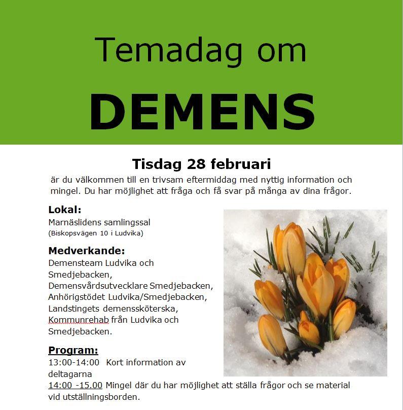 Temadag om demens