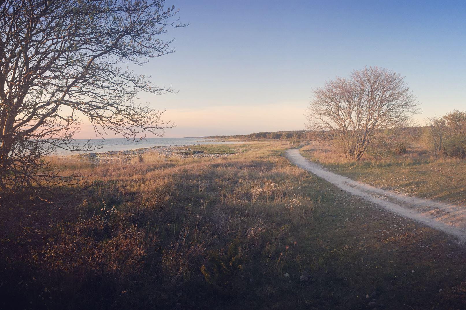 Gotland Hiking Week