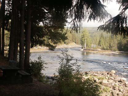 Grenforsens naturreservat - naturskön forsravin i nedre Ljungan