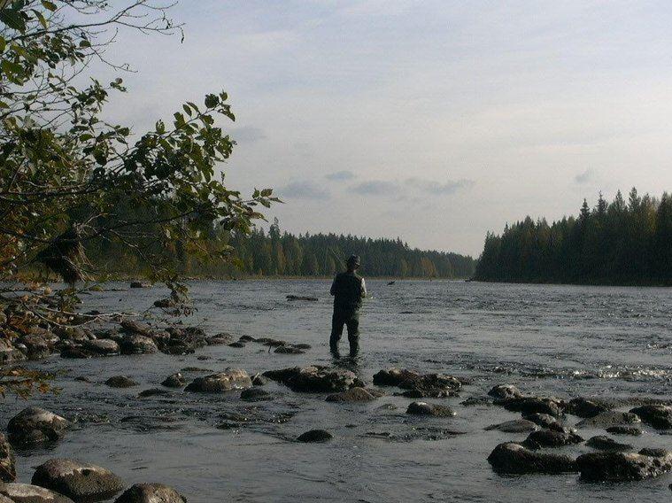 Fiskekort Malung - Malungs FVOF