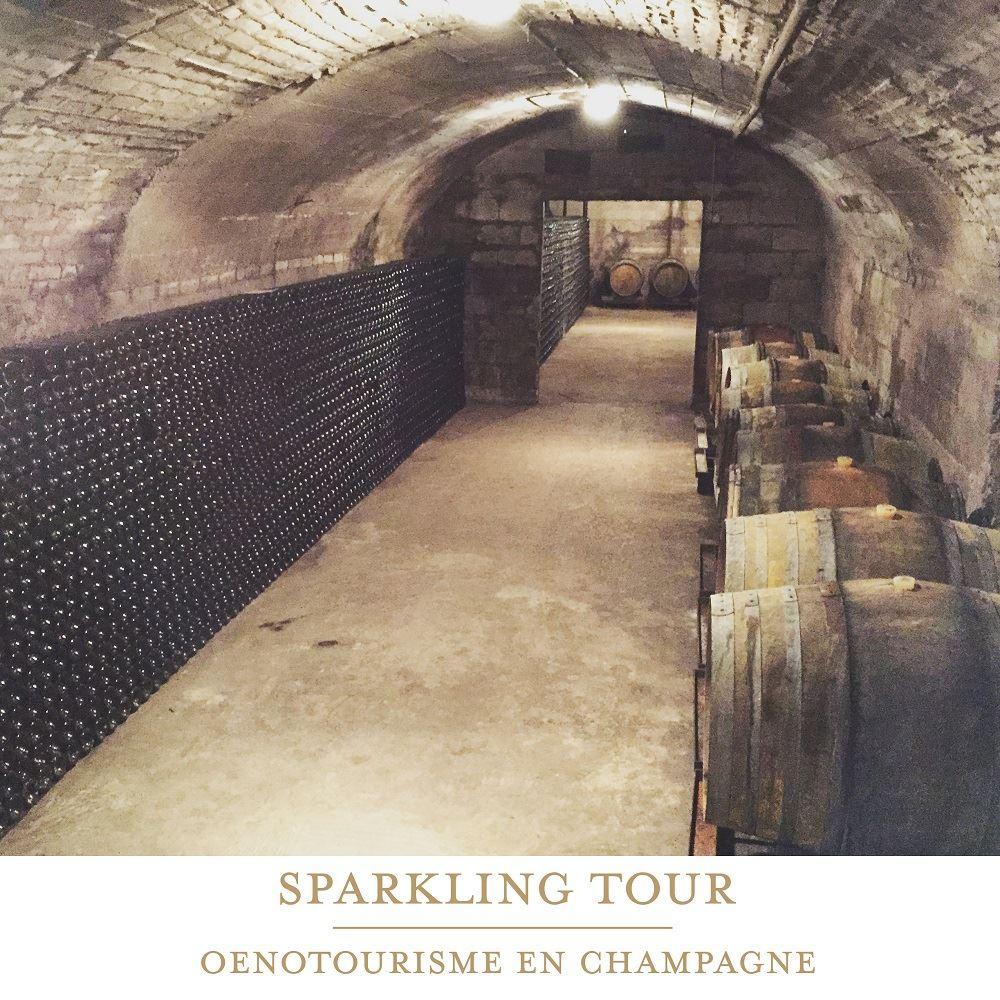 Full Day Tour in Champagne Oenotourisme