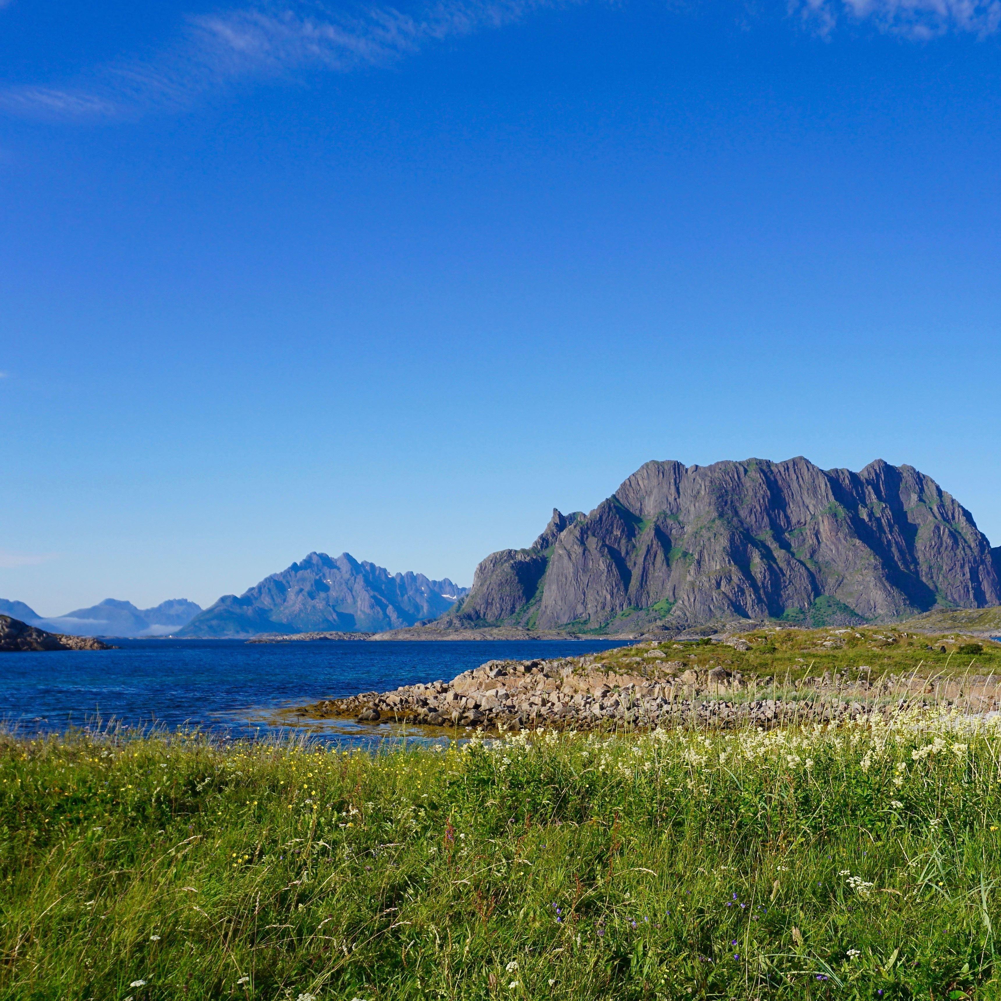 3 Days of Beach Glamping (Trollfjord & Wildlife Cruise - Hiking & Kayaking - Goat Farm Visit)
