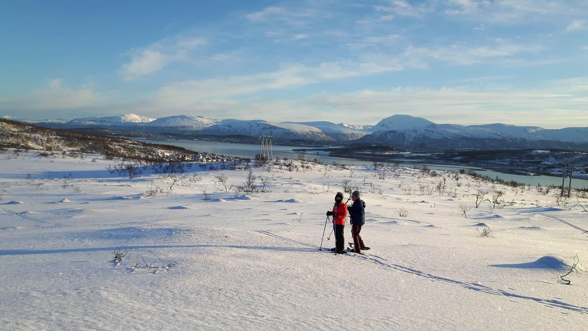 Snowshoe walk on winter landscape – Karl Ivar's Guided Tours