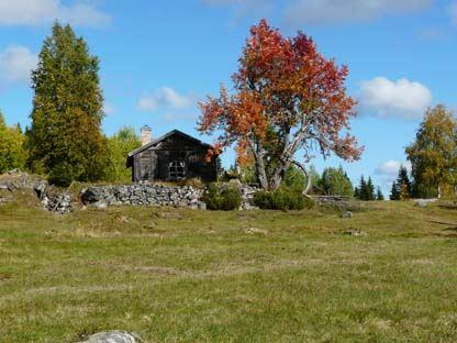 Rigåsens naturreservat - nybygge med blomrika ängar