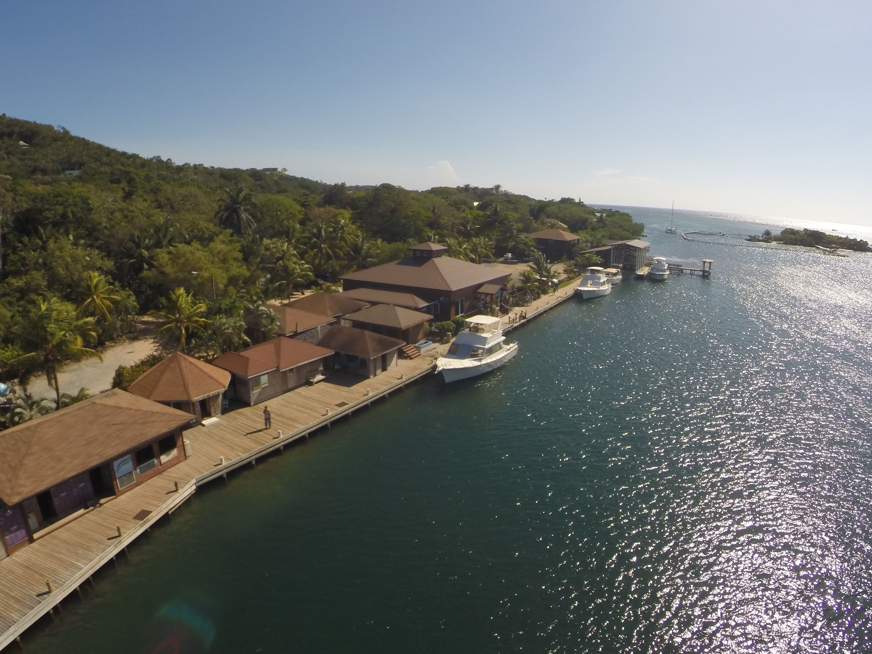 Roatan private day tour