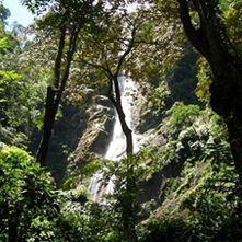 Jungle Hiking - El Bejuco Waterfall (half day)