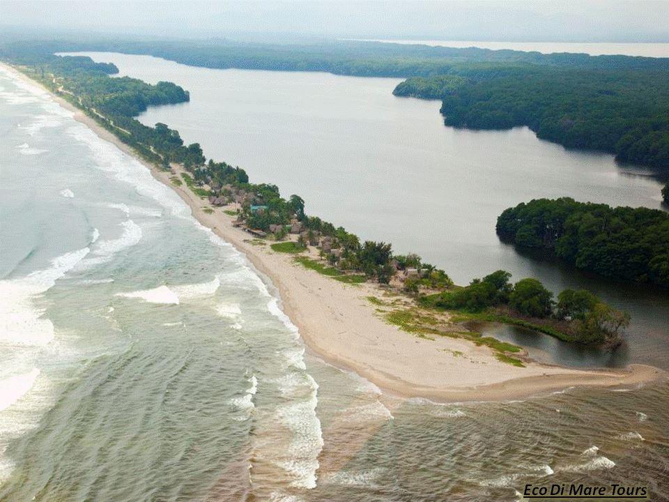 Laguna Los Micos - Miami