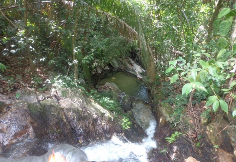 Sambo Creek Canopy Tour