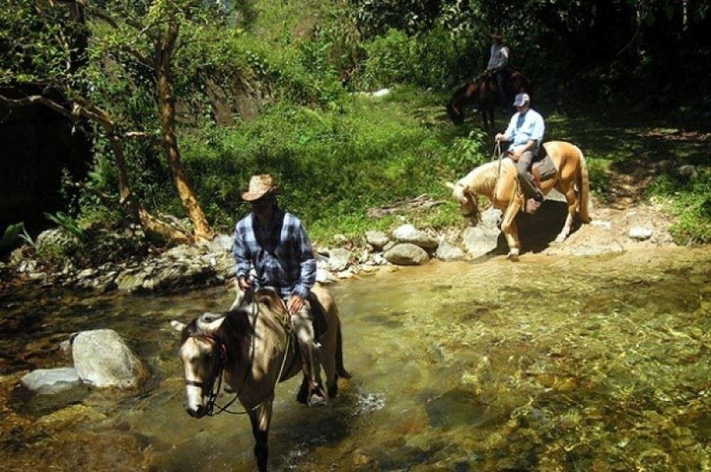 Cabalgata en el valle del Rio Cangrejal