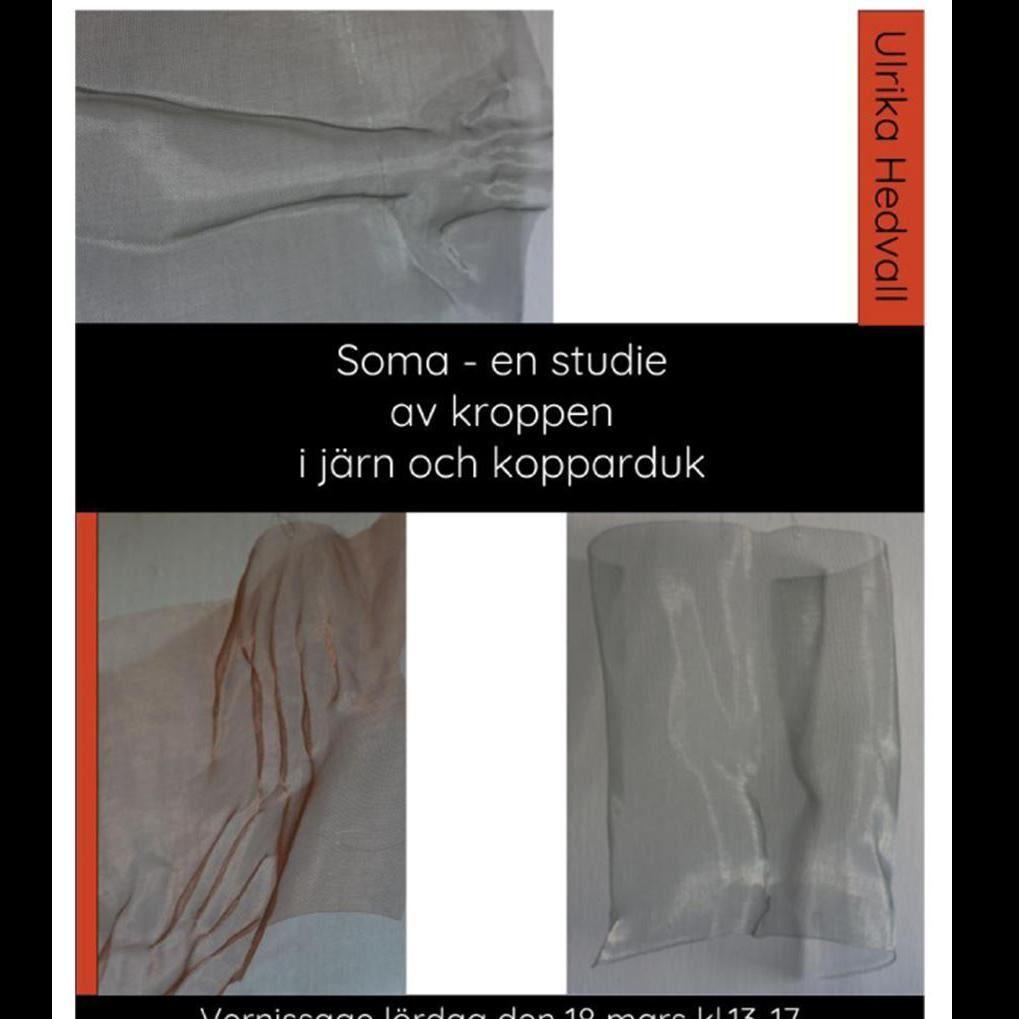 Soma - en studie av kroppen i järn och kopparduk