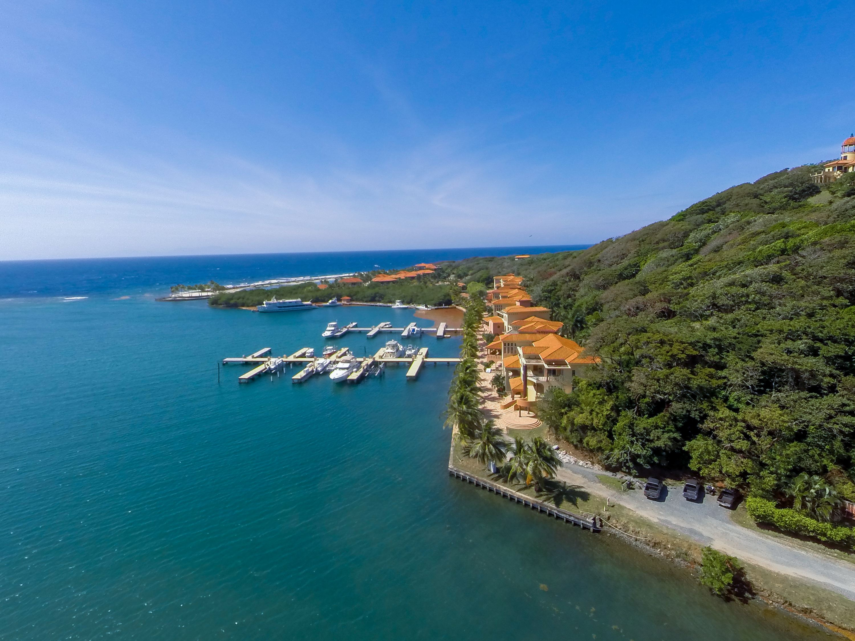 Day trip to Roatan's animal sanctuary and lagoon