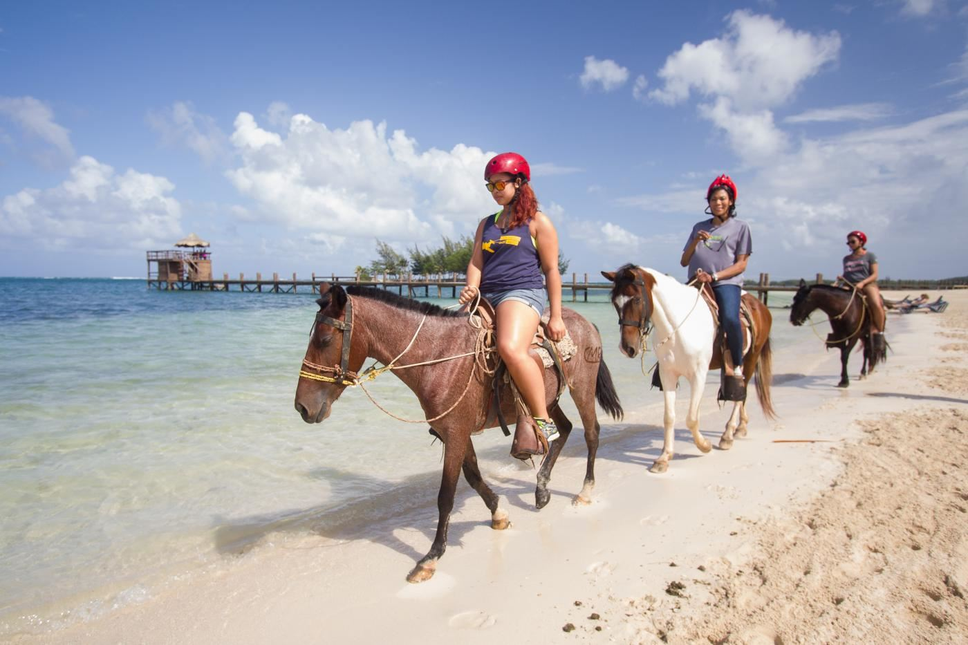 Jungle Horseback riding Roatan