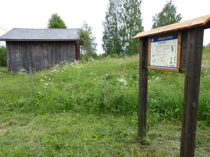 Smedsgårdens naturreservat - Artrika ängsbackar på Alnö