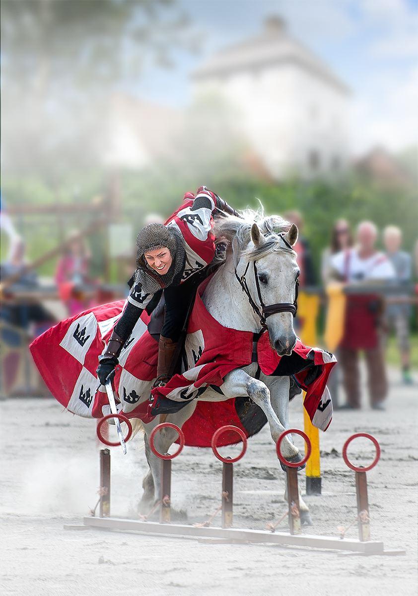 Rikstornering at Hovdala Castle 6-7 of May!