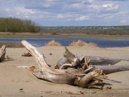 Naturschutzgebiet Stornäset