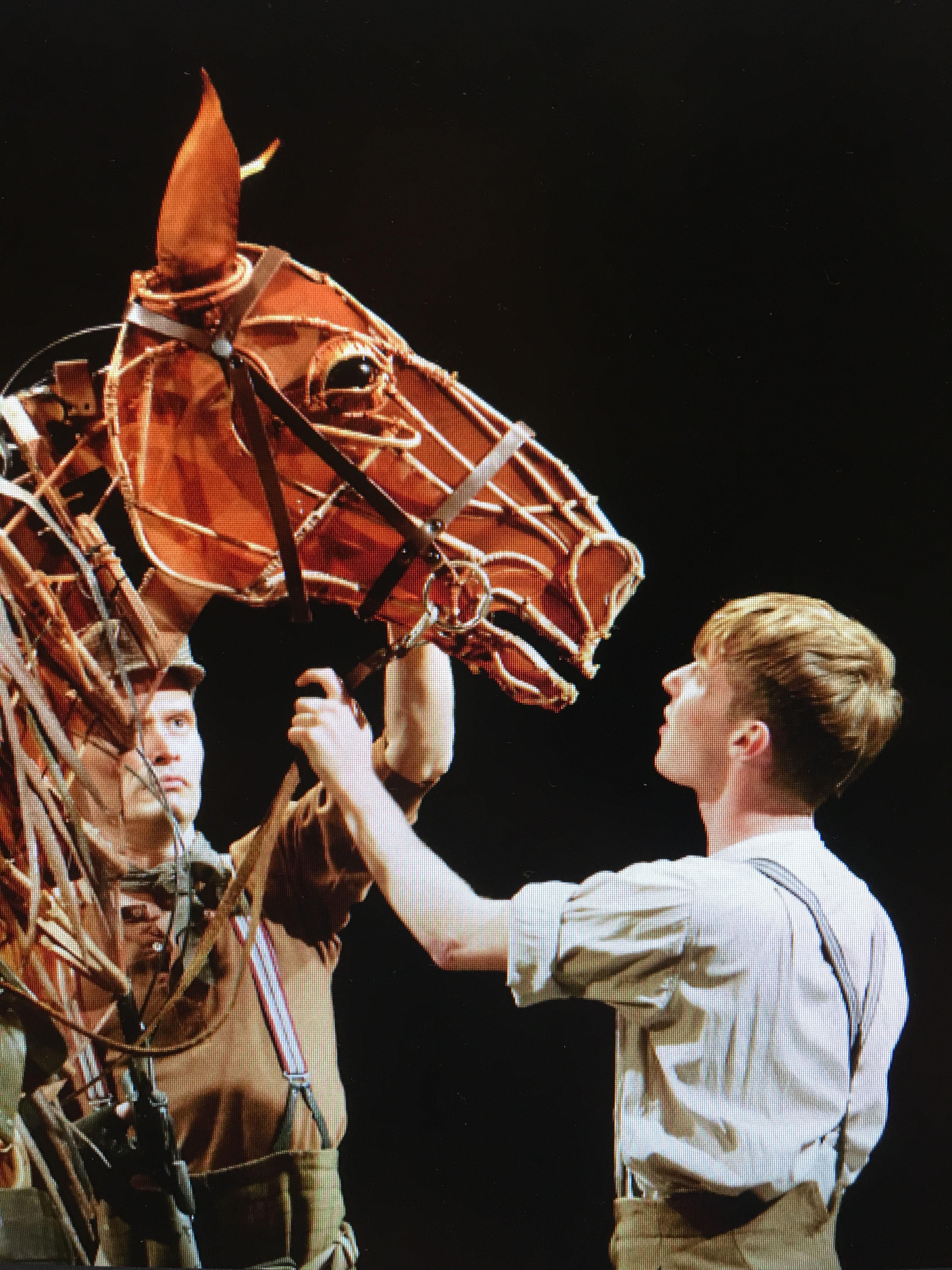 Live på bio - War Horse