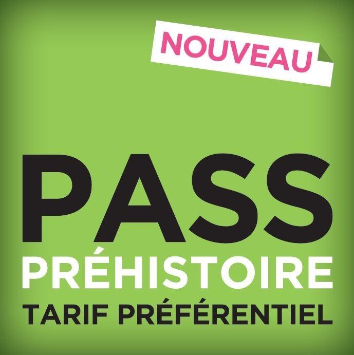 Pass Préhistoire 3 sites