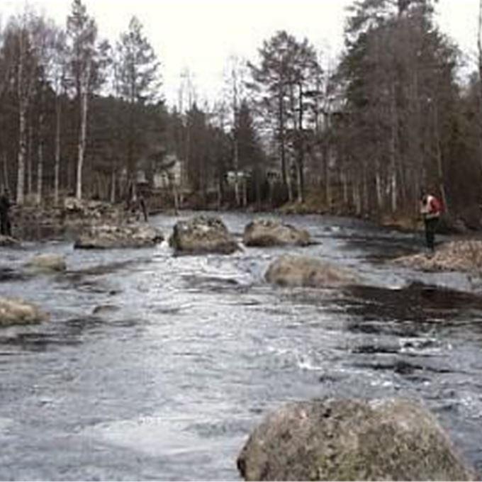 Fiskekort Envikens Fiskevårdsområde