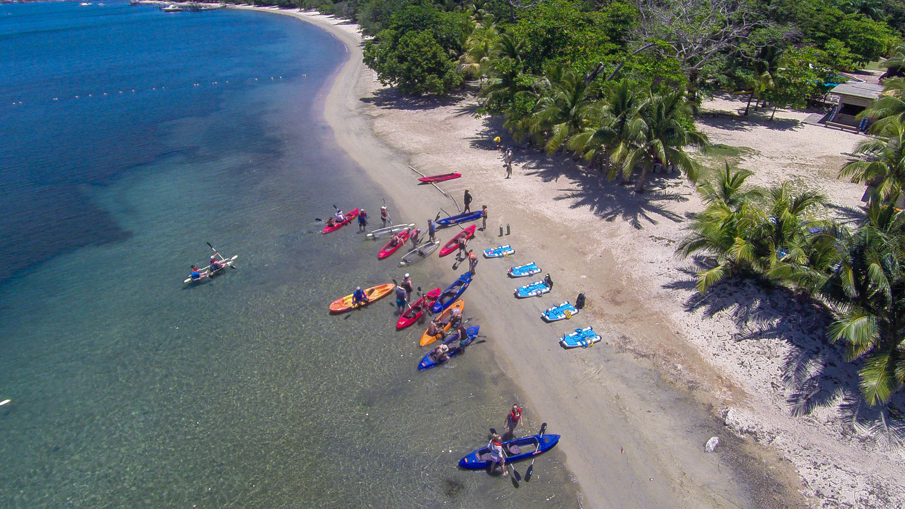 Roatan Shore and Eco Tour