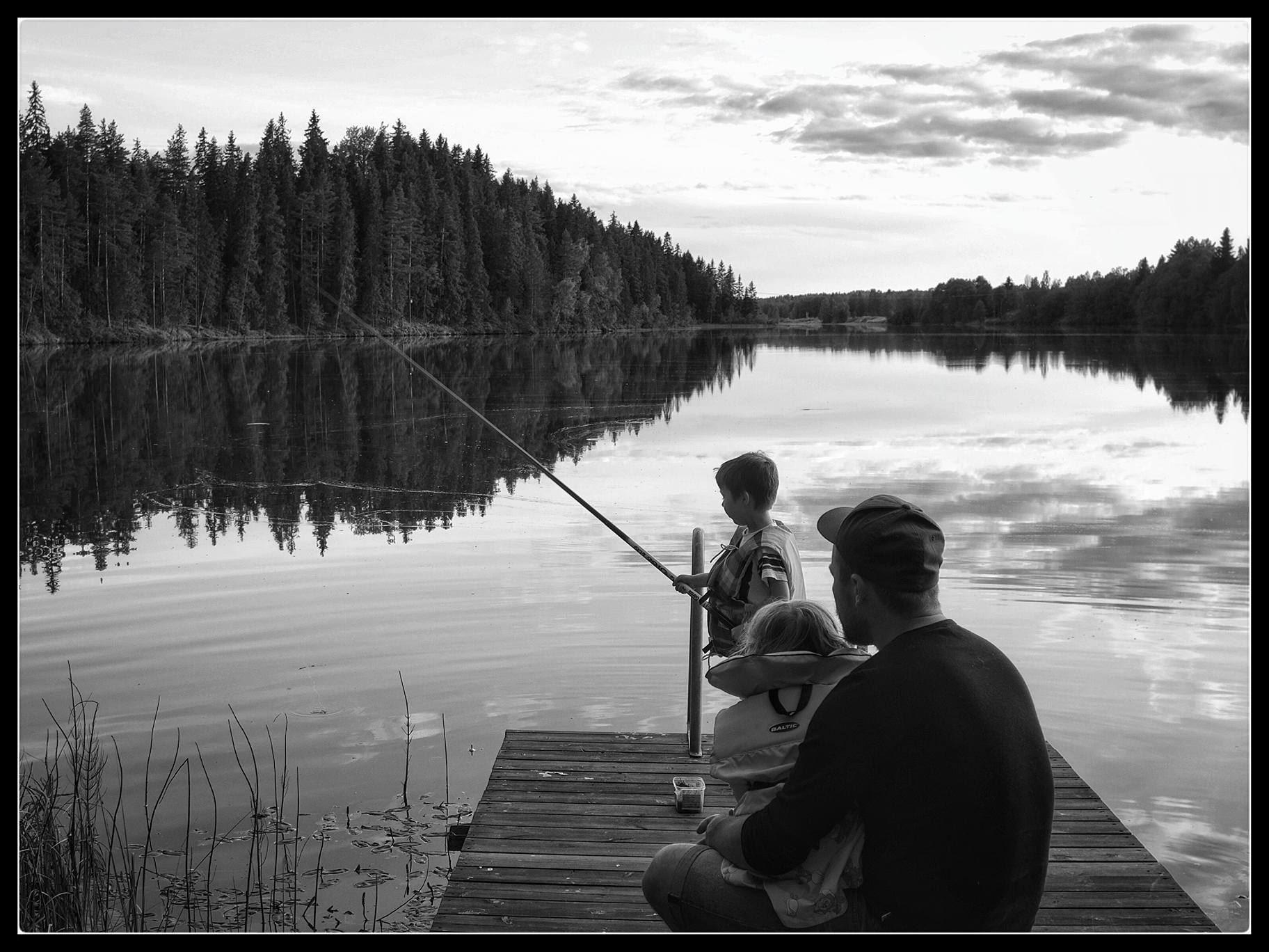 Fiskekort Envikens FVO Dagkort