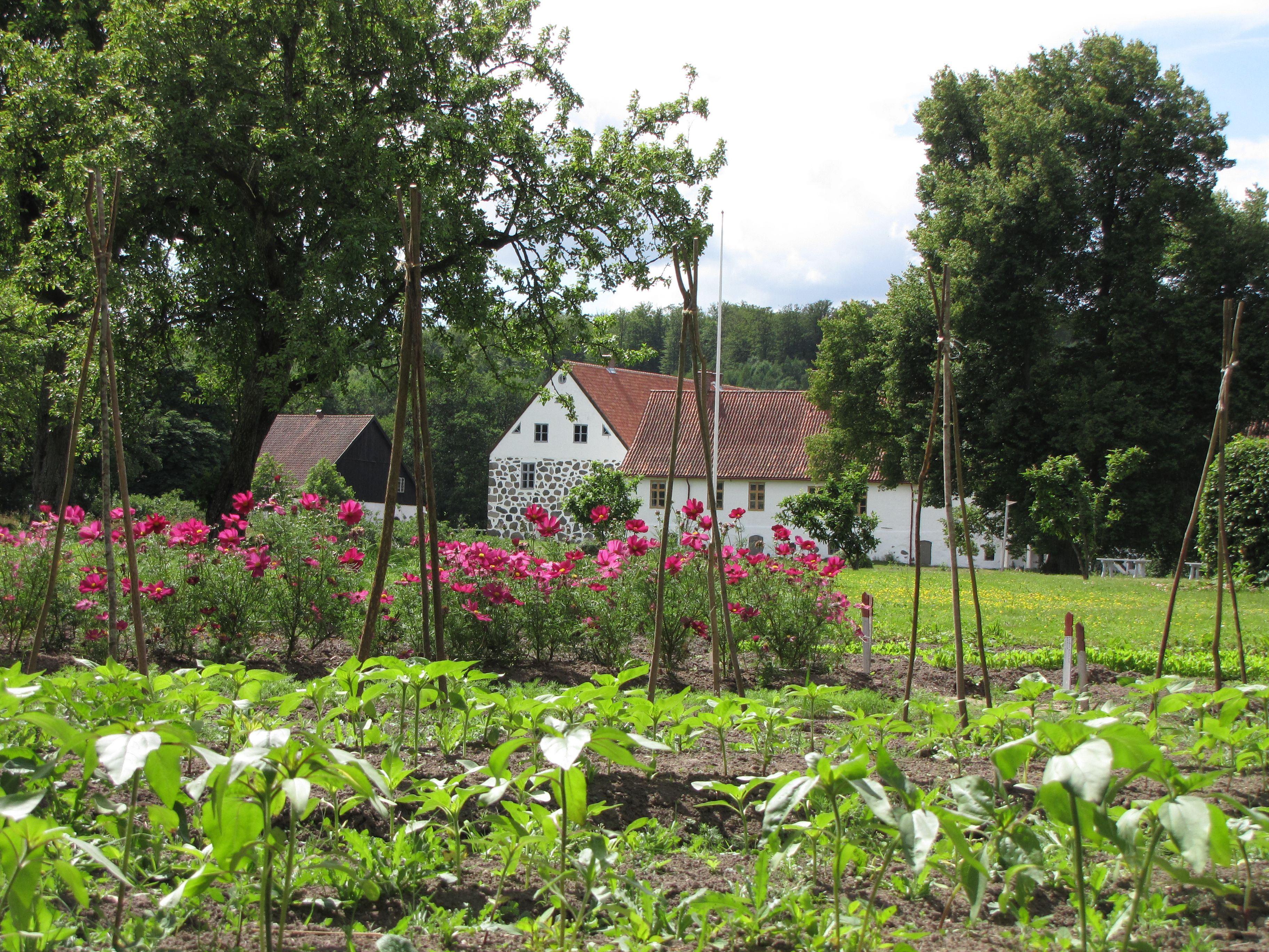 Trädgårdsguidning - visning av park och trädgård