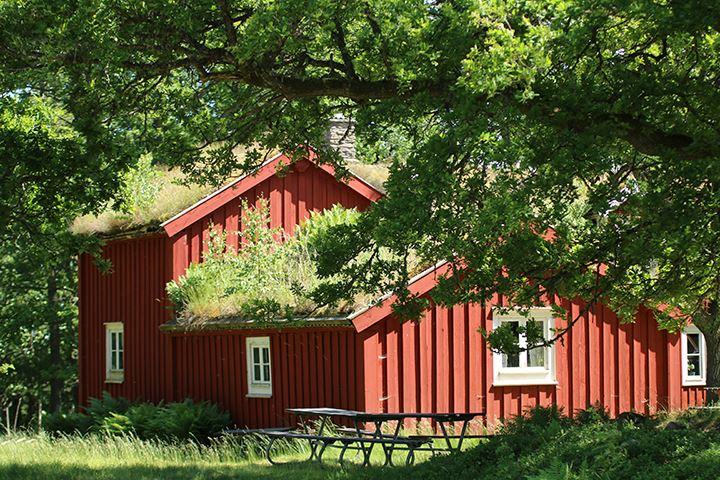 Martin Bylund,  © Tingsryds Kommun, Vandra med vy Lunnabacken–Kärrasand.