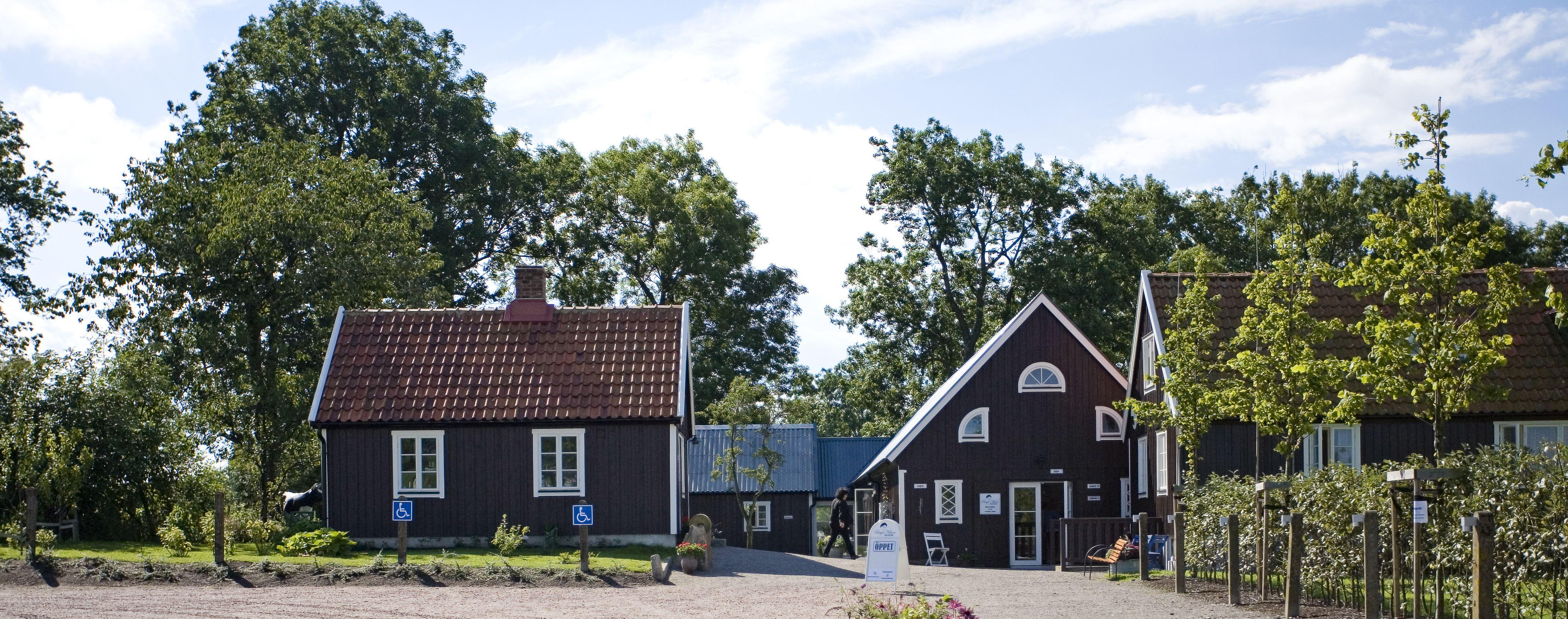 Frukostkonsert på Birgit Nilsson Museum