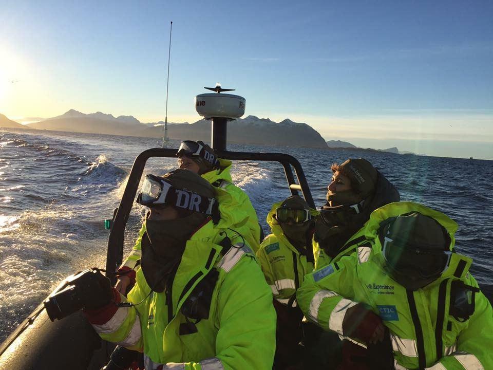 Tromsø Island Safari by RIB