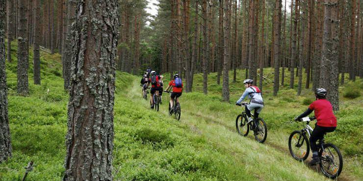Off-road cykeläventyr