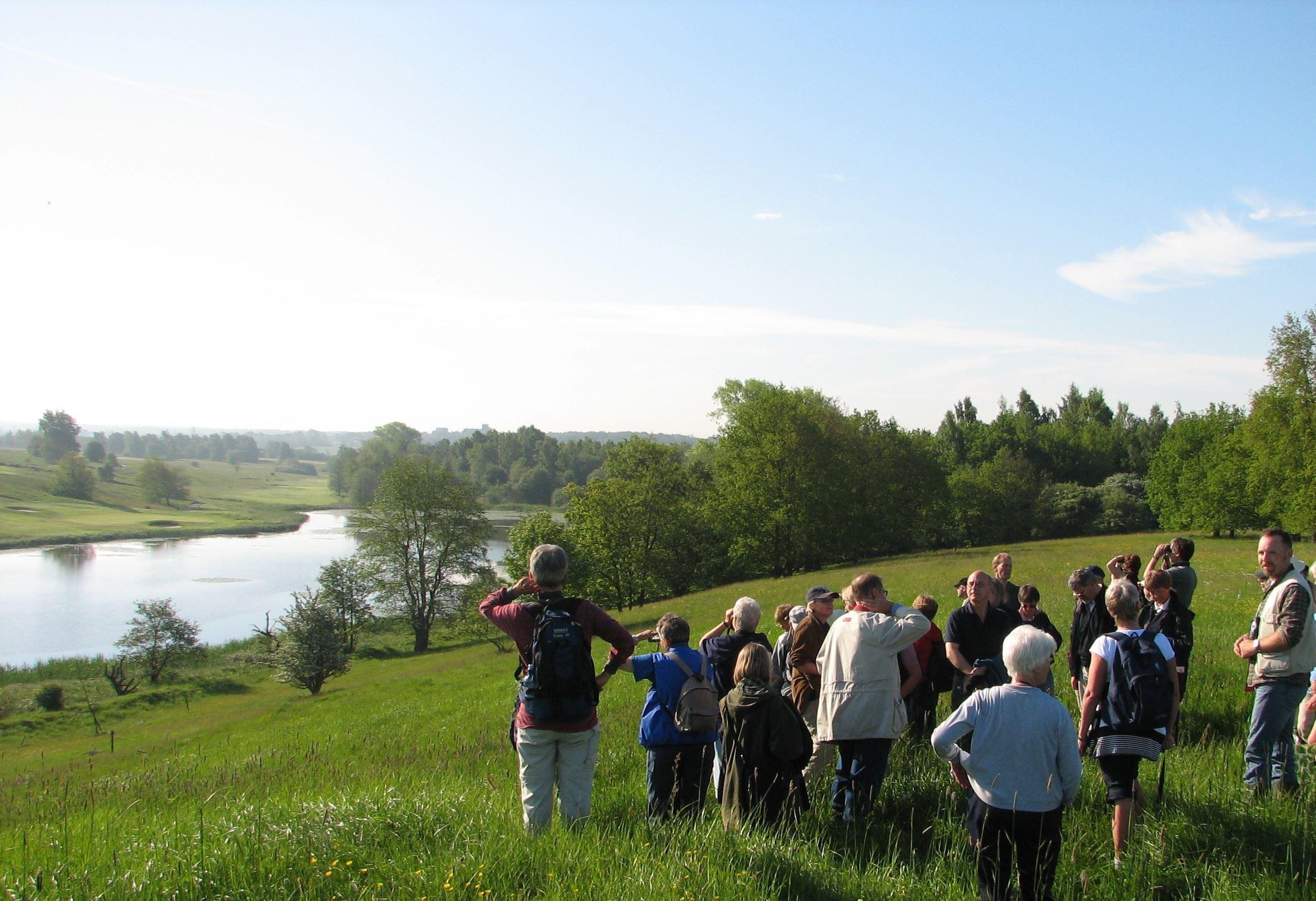 Ornitologisk vandring Kungsmarken 3 juni