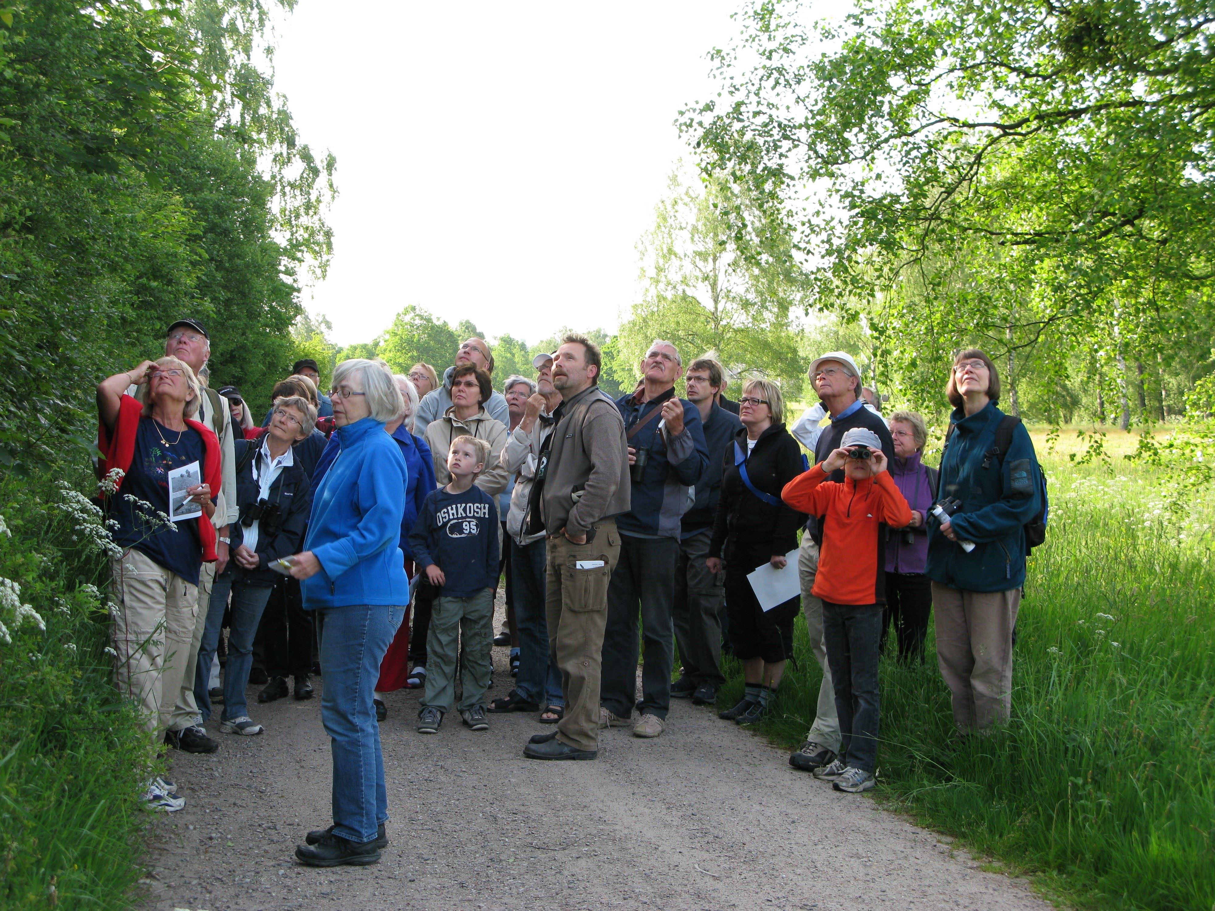Botanisk vandring 3 juni
