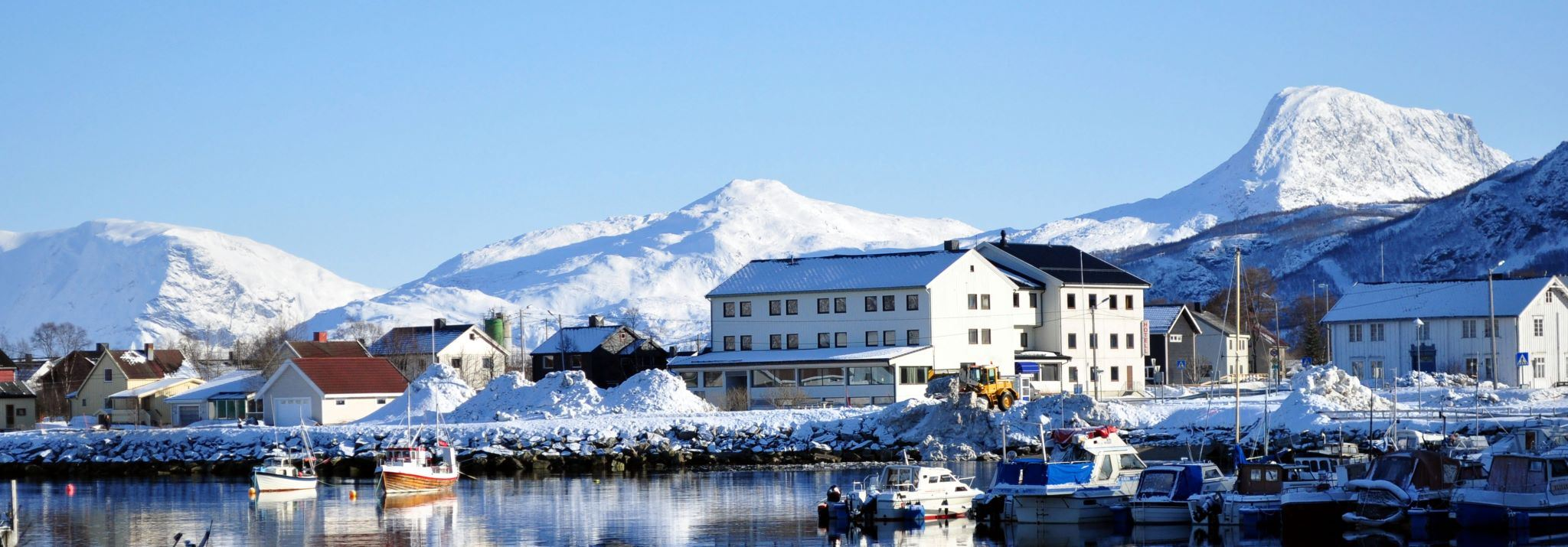 Walsafari in Skjervøy, Kvænangen und im Reisafjord - Reisafjord Hotel