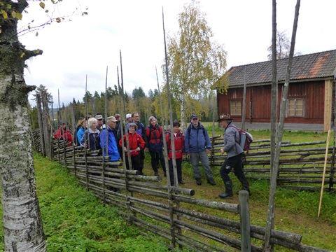 Vandringsfestival 10 år - Tällbergsvandring