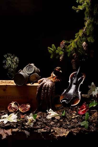 Musik: Seasons - Fem årstider