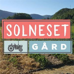 Solneset Gård (Farm) - Motorhome and caravan parking.