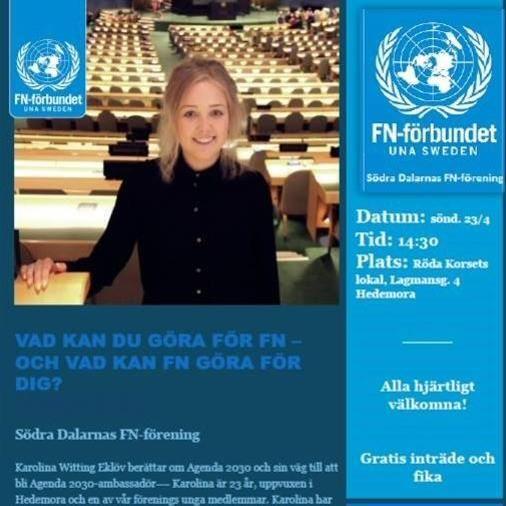 Vad kan du göra för FN - och vad kan FN göra för dig?
