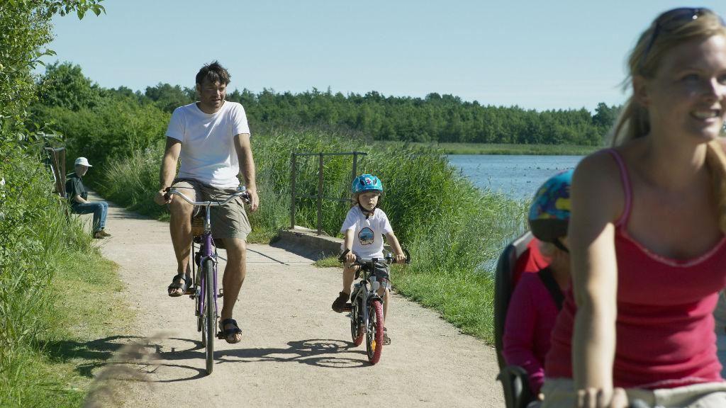 Lej en cykel ved Danhostel Haderslev